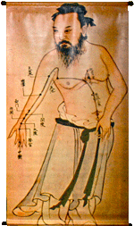 Acupuncture Illustration